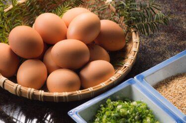 【韓国経済終了のお知らせ】物価が上昇しすぎて卵が驚きの価格に…スタグフレーション待ったなしwww